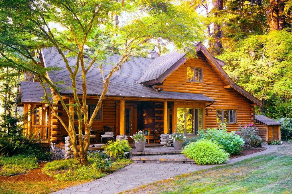 cottage surrounded by trees