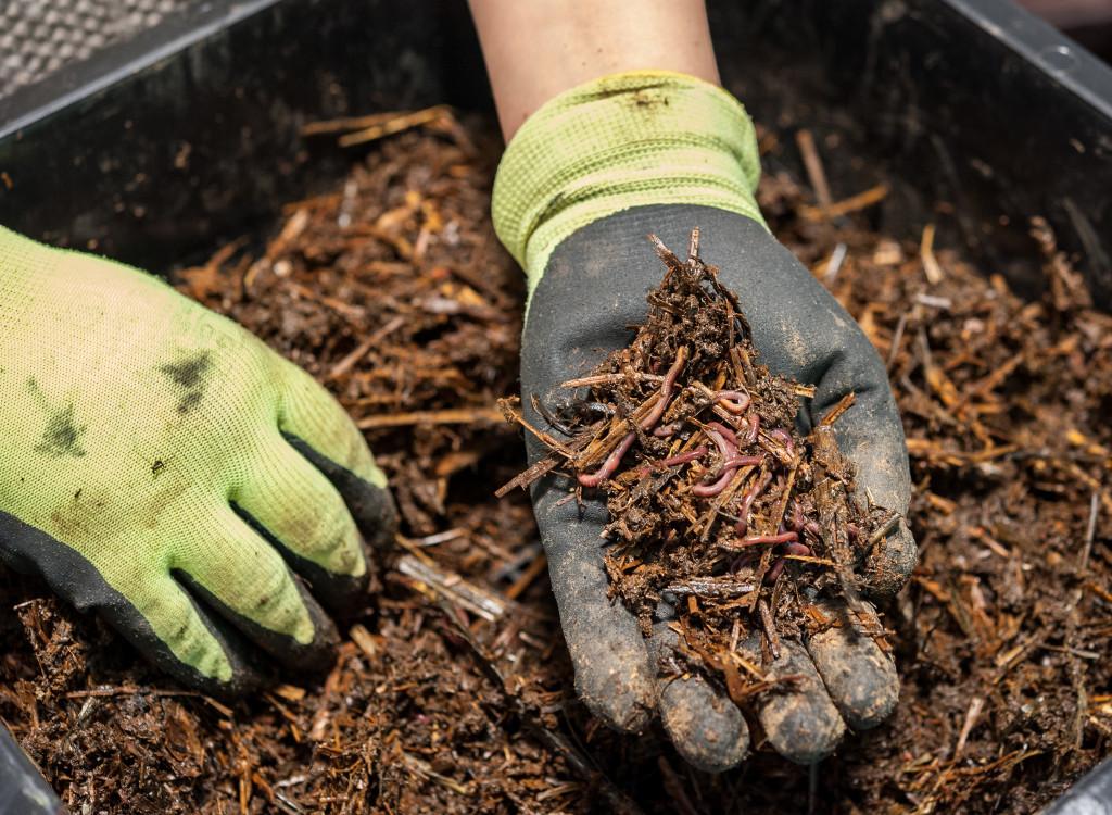 create garden compost